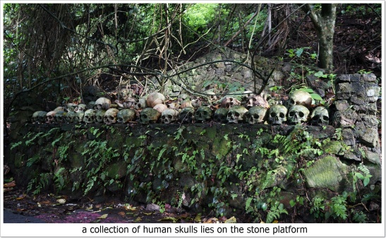 Trunyan cemetery bali