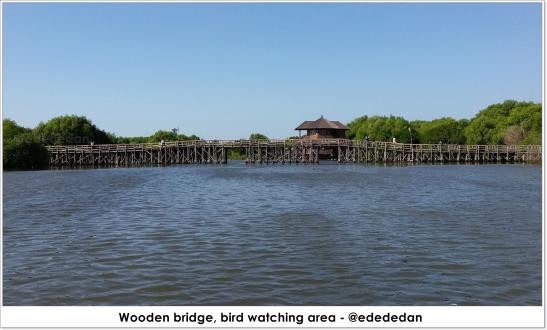 mangrove pik 2