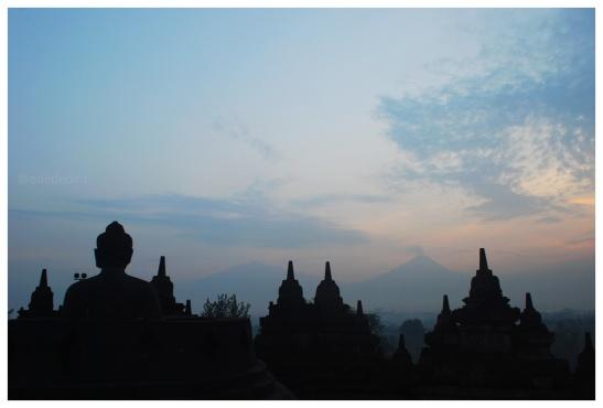 edededan Sunrise Borobudur 1
