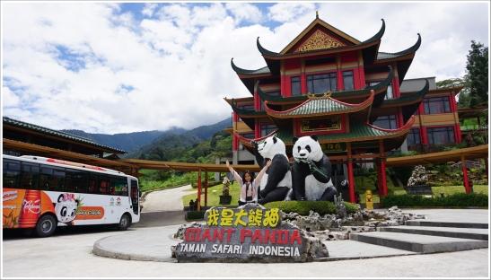 One Day With Giant Pandas At Taman Safari Bogor Edededan