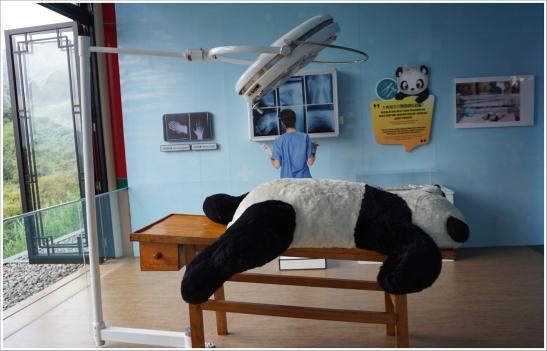 giant pandas tsb 4